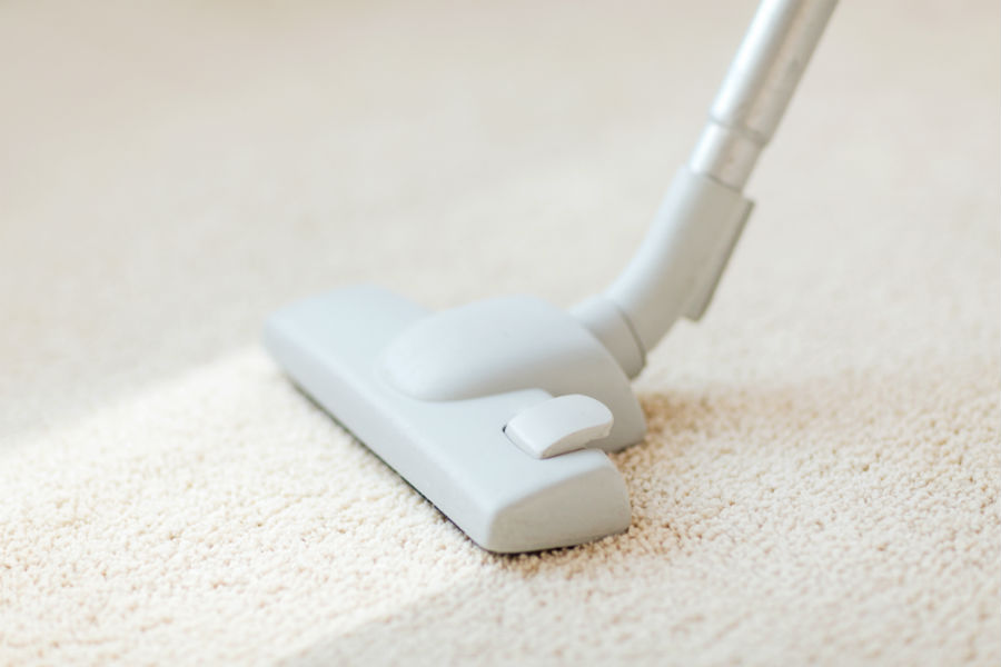 Caring for your High Traffic with Area Rug Carpets